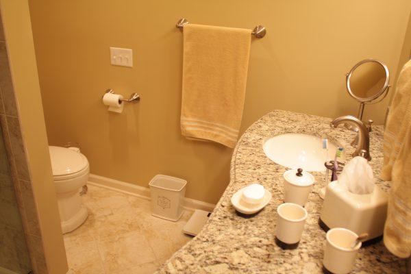 Bathroom (84)