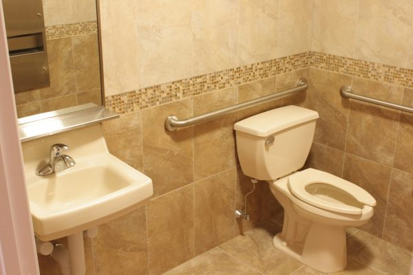 Grab Bars ADA Bathroom